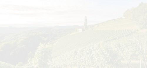 Strom Steiermark