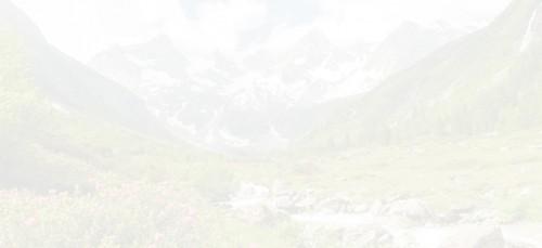 Energie Kärnten